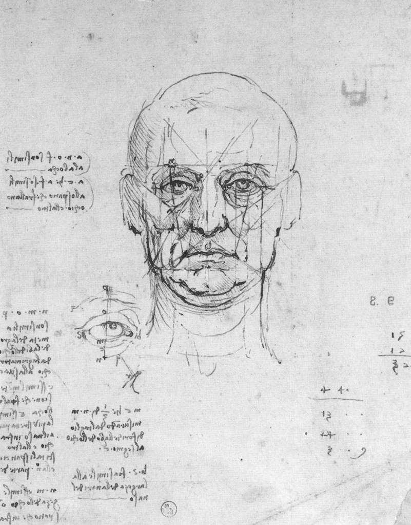 Bases Cerebrales del procesamiento de caras