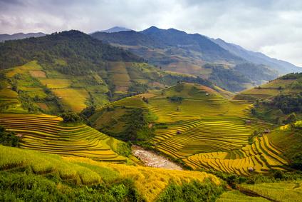 Course Image La agricultura en China