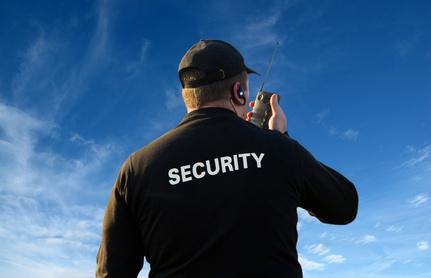 Seguridad pública y privada: límites constitucionales